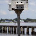 USA - FLORIDA - Fort Myers_WP